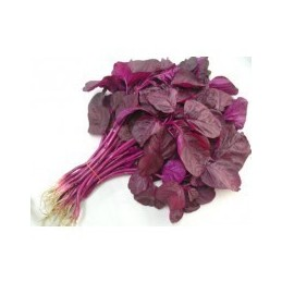 Red Thandu Keerai Seeds