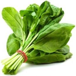 Spinach Seeds(Palak)